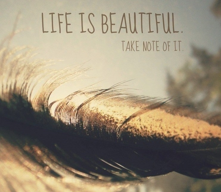 life-is-beautiful-quotes-3.jpg