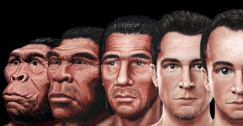 evolving humans.png